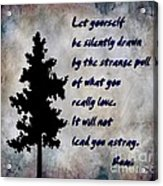 What You Really Love - Rumi Quote Acrylic Print by Barbara Griffin
