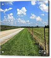 Where The Road May Take You Acrylic Print by Cathy  Beharriell