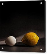 Which Came First Acrylic Print by Peter Tellone