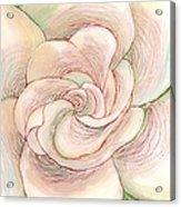 White Gardenia 1 Acrylic Print by Anna Skaradzinska
