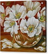 White Poppies Acrylic Print by Summer Celeste