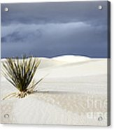 White Sands Dark Sky Acrylic Print by Bob Christopher