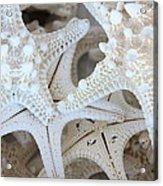 White Starfish Acrylic Print by Carol Groenen
