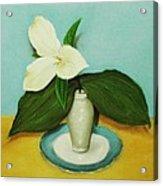 White Trillium Acrylic Print by Anastasiya Malakhova