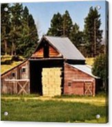 Whitefish Barn Acrylic Print by Marty Koch