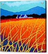 Wicklow Hills Acrylic Print by John  Nolan