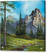 Wilderness Trail Acrylic Print by C Steele