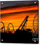 Wildwood At Dawn Acrylic Print by Mark Miller