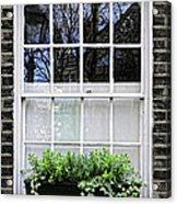 Window In London Acrylic Print by Elena Elisseeva