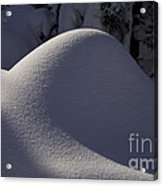 Winter Abstract Acrylic Print by Sean Griffin