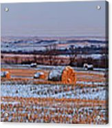 Winter Bales Acrylic Print by Scott Bean
