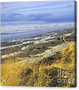 Winter Beach Acrylic Print by Jeanette French