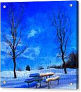 Winter Day On Canvas Acrylic Print by Dan Sproul
