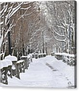 Winter Acrylic Print by Frederico Borges