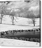 Winter In Kentucky Acrylic Print by Wendell Thompson