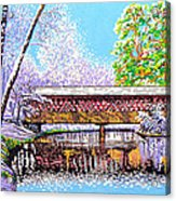 Winter Into Spring Acrylic Print by David Linton