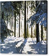 Winter Landscape Acrylic Print by Aged Pixel