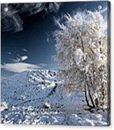 Winter Landscape Acrylic Print by Grant Glendinning