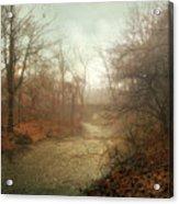 Winter Mist Acrylic Print by Jessica Jenney