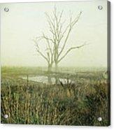 Winter Morning Londrigan 1 Acrylic Print by Linda Lees