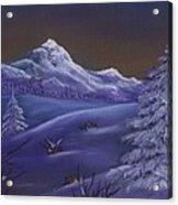 Winter Night Acrylic Print by Anastasiya Malakhova
