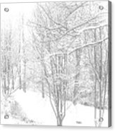 Winter Of '14 Acrylic Print by Larry Bishop