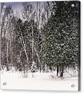 Winter Postcard Acrylic Print by Gwen Gibson