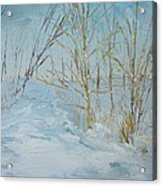 Winter Scene Acrylic Print by Dwayne Gresham