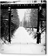 Winter Tracks Acrylic Print by Aaron Lee VonBerg