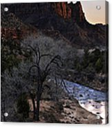 Winter Watchman Acrylic Print by Chad Dutson