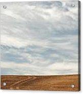 Wispy Clouds Acrylic Print by Doug Davidson