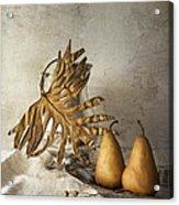 With Pears Acrylic Print by Elena Nosyreva