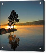 Witness To The Dawn II Acrylic Print by Steven Ainsworth