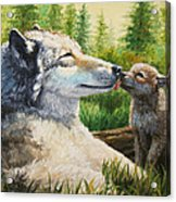 Wolf Painting - Spring Kisses Acrylic Print by Crista Forest