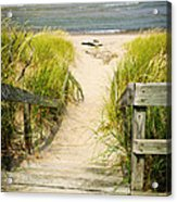 Wooden Stairs Over Dunes At Beach Acrylic Print by Elena Elisseeva