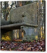 Woodland Throne Acrylic Print by Andrew Pacheco