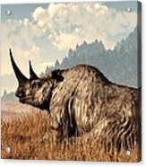 Woolly Rhino And A Marmot Acrylic Print by Daniel Eskridge