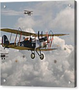 Ww1 Re8 Aircraft Acrylic Print by Pat Speirs