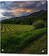 Wyoming Pastures Acrylic Print by Chad Dutson
