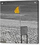 Yellow Hazard Acrylic Print by Susan Leggett