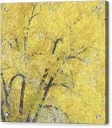 Yellow Trees Acrylic Print by Ann Powell