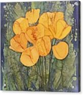 Yellow Tulips Acrylic Print by Carolyn Doe