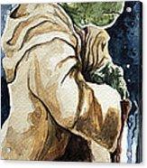 Yoda Acrylic Print by David Kraig