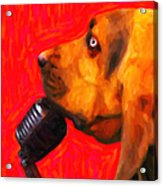You Ain't Nothing But A Hound Dog - Red - Painterly Acrylic Print by Wingsdomain Art and Photography