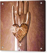 You Can Have My Heart Acrylic Print by Terry Rowe