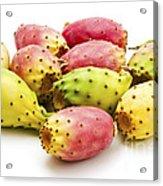 Fruits Of Opuntia Ficus-indica  Acrylic Print by Fabrizio Troiani