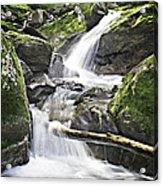0804-0035 Cascade Above Triple Falls Acrylic Print by Randy Forrester