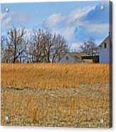 Artist In Field Acrylic Print by William Jobes
