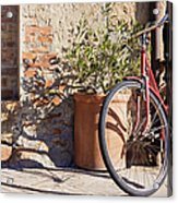 Bicycle Acrylic Print by Jeremy Woodhouse