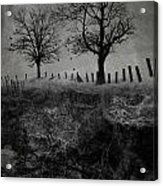 Dark Roost Acrylic Print by Ron Jones